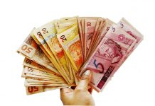 Notes Brazilian Real Notes in Hand